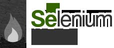Selenium Camp 2012
